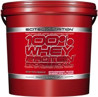 Протеин Scitec Nutrition 100% Whey Protein Professional 5 kg